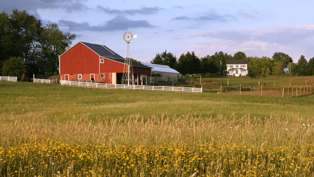 landscape photo of grassy field and barn in the background